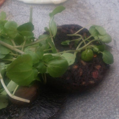 Black pudding hiding beneath watercress